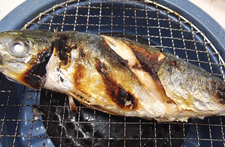 Ajisioyaki2